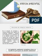 ¿El decreto reglamentario sobre licencias ambientales tiene en cuenta el principio precautelatorio.pptx