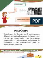 Implementacion Del Cneb Ppt