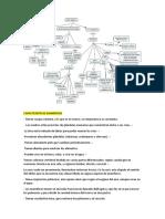 MAMÍFEROS-ECUADOR.docx
