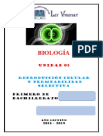 05-B-1ªB-R.CELULAR-LEV-18-19