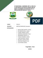 Informe Fisica II