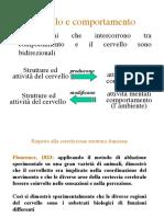Psicologia generale 3 _SN e tecniche visualizzazione_.pdf