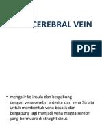 Deep Cerebral Vein
