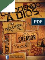 Guia del Lider 2015.pdf