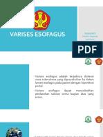 Atresia Esofageal Fistula Trakeoesofageal