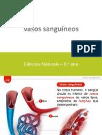 ctic6_em_apresentacaoeletronica_g2.pptx