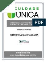 Antropologia Brasileira.pdf