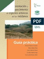 Reforestación de Especies Arbóreas en médanos