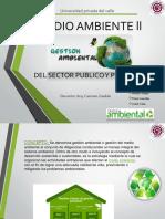 Gestion ambiental Publico y Privado
