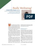 AreWeReallyMeditating.pdf