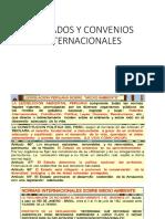 4. Tratados y Convenios Internacionales