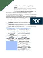 Nuevas caracteristicas Pymes.docx