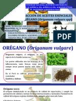 Extracción de Aceite Esencial de Orégano
