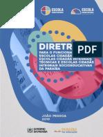 DIRETRIZES DAS ECIS 2019.pdf