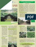 Trip-Palto-Plantones.pdf
