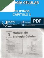 Filipinos Capítulo 3.pdf