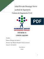 Universidad Privada Domingo Savi1