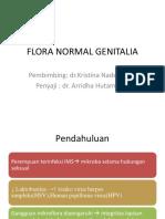 Flora Normal Genital