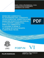 Derecho Ambiental 2019