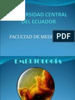Brnltn Embriologia II