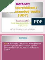 218390802-UDT-Cryptorchidism.ppt