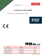 riello_20007171_9_es_rev8.pdf