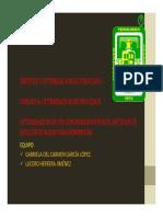 Pp Presentacion Condensador