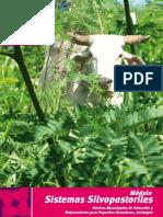 sistemassilvopastorilescc-130830140202-phpapp01.pdf