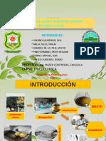 Universidad Nacional Agraria de La Selva 1