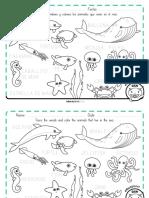 Animales Acuaticos Oceano Educaplanet