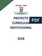 PCI MONTE ALEGRE.docx