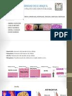 3-5 Patologíag. Grupo 1 Tema 7