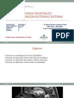 PONENCIA TRONCO ENCEFALICO USMP.pptx