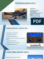 CURSO LUIS F .pdf