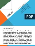 PPT Especies y Ecosistema