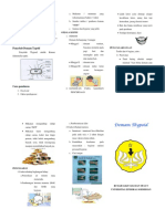 RSGM Leaflet Thypoid