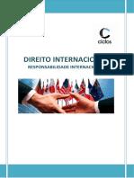8. Responsabilidade Internacional.docx