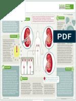 Kidney Stones 2016