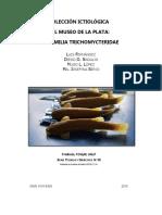 Revista ictiologia_completa