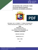 Machaca_Vargas_Iris_Yudy.pdf