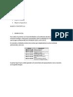 HIDRAULICA INFORME.docx