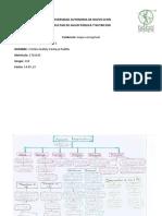 mapa conceptual aparato respiratorio.docx
