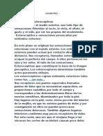 CULTURA FÍSICA Guia 3 Consulta