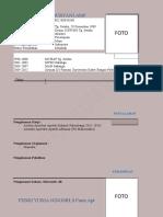 format CV (1).docx