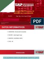REGIMEN CONSTITUCIONAL DE DEFENSA DEL CONSUMIDOR.ppt