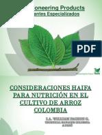 Nutricion Arroz Haifa Colombia