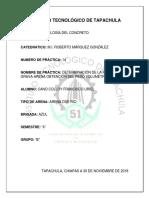 TECNOLOGIA DEL CONCRETO PRACTICA 14