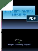 3rd Pillar of Bsp Apple Joy Santos