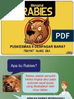Penyuluhan Rabies