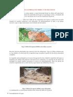 FALLAS DE  LAS PRESAS DE TIERRA Y GRAVEDAD.docx